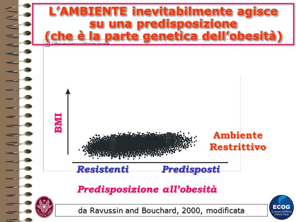 da Ravussin and Bouchard, 2000, modificata Predisposizione allobesità ResistentiPredisposti BMI Ambiente Obesogenico Ambiente Restrittivo LAMBIENTE in