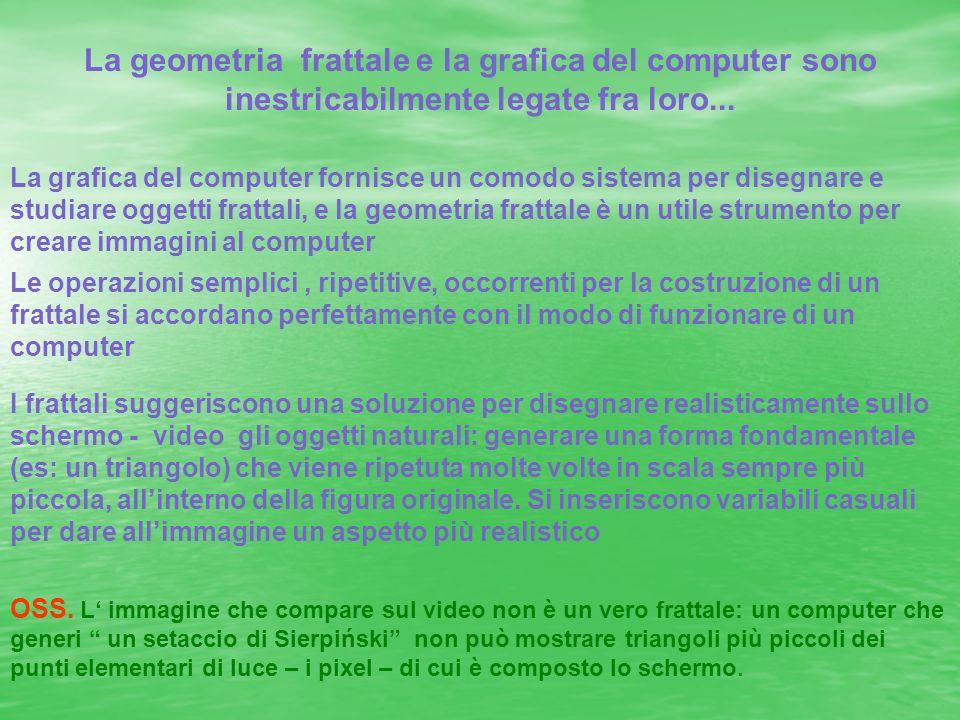 La geometria frattale e la grafica del computer sono inestricabilmente legate fra loro... La grafica del computer fornisce un comodo sistema per diseg