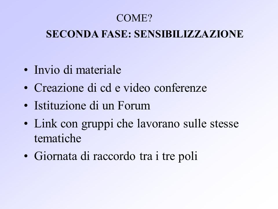 Invio di materiale Creazione di cd e video conferenze Istituzione di un Forum Link con gruppi che lavorano sulle stesse tematiche Giornata di raccordo