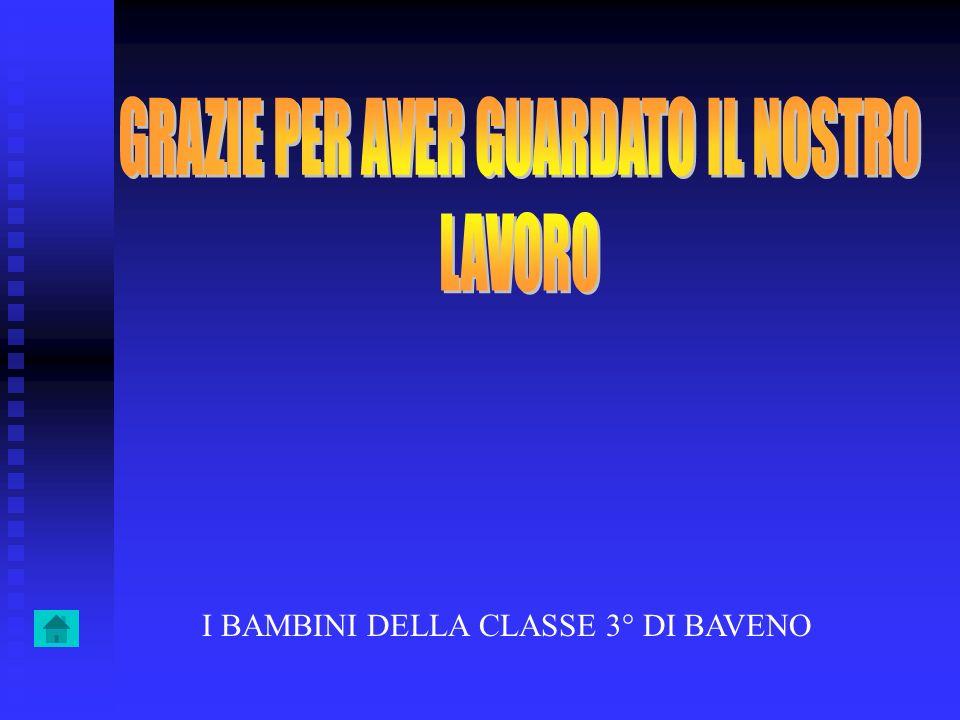 I BAMBINI DELLA CLASSE 3° DI BAVENO