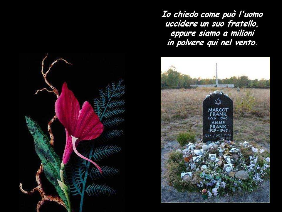 Ad Auschwitz tante persone, ma un solo grande silenzio; è strano: non riesco ancora a sorridere qui nel vento.