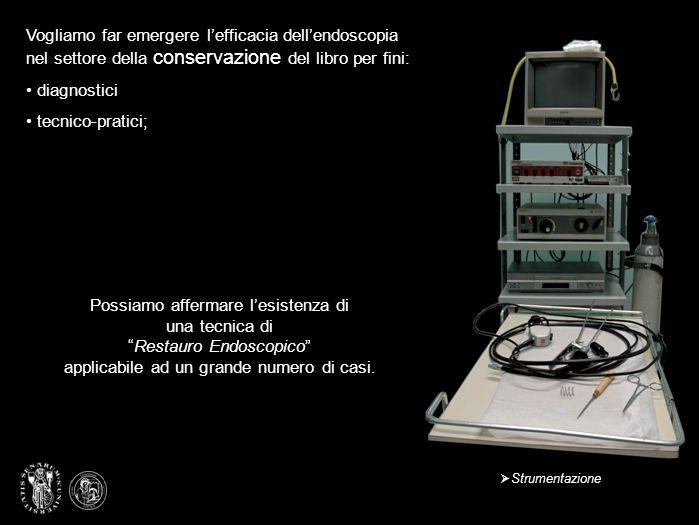 Lesperimento è stato condotto su un esemplare a stampa del 700 con coperta floscia in cartoncino rustico e nervi passanti di pergamena arrotolata.