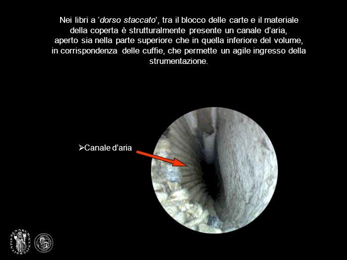 Utilizzando una microcamera a fibre ottiche è possibile, monitorare lo stato di conservazione del dorso, cucitura e i suoi supporti, anche quando la coperta, dallesterno, ne impedisce in parte o completamente la visione.