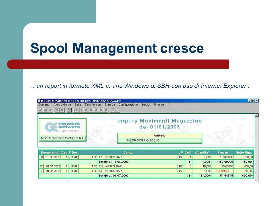 .. un report in formato XML in una Windows di SBH con uso di Internet Explorer : Spool Management cresce