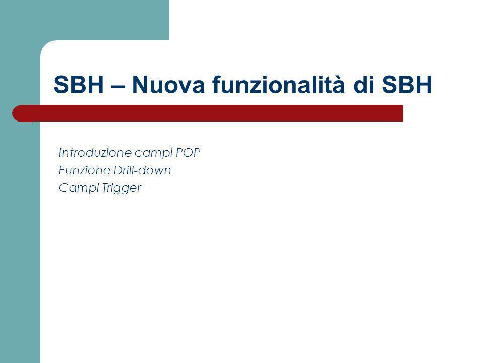 SBH – Nuova funzionalità di SBH Introduzione campi POP Funzione Drill-down Campi Trigger