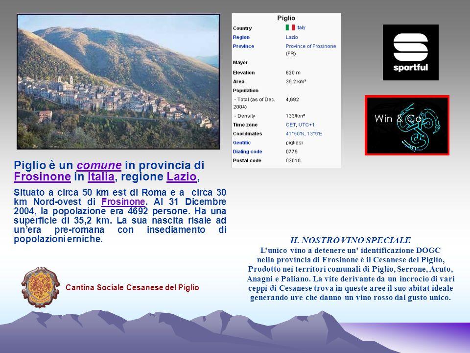 IL NOSTRO VINO SPECIALE Lunico vino a detenere un identificazione DOGC nella provincia di Frosinone è il Cesanese del Piglio, Prodotto nei territori c