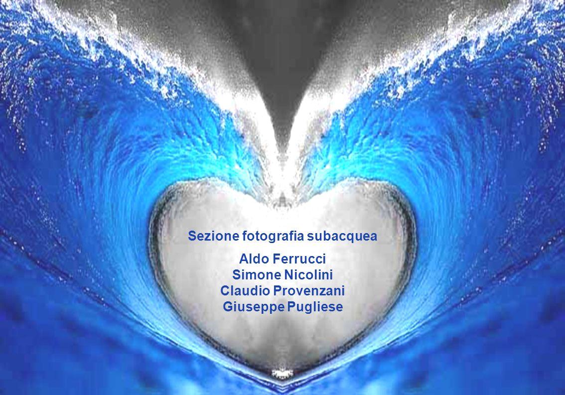 Sezione fotografia subacquea Aldo Ferrucci Simone Nicolini Claudio Provenzani Giuseppe Pugliese