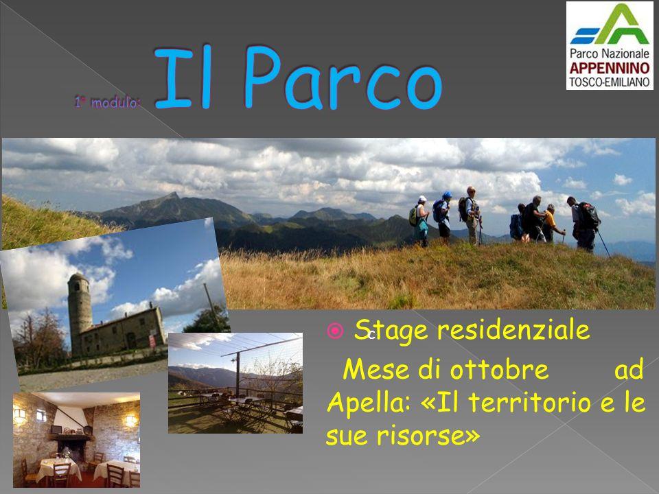 Stage residenziale Mese di ottobre ad Apella: «Il territorio e le sue risorse» c