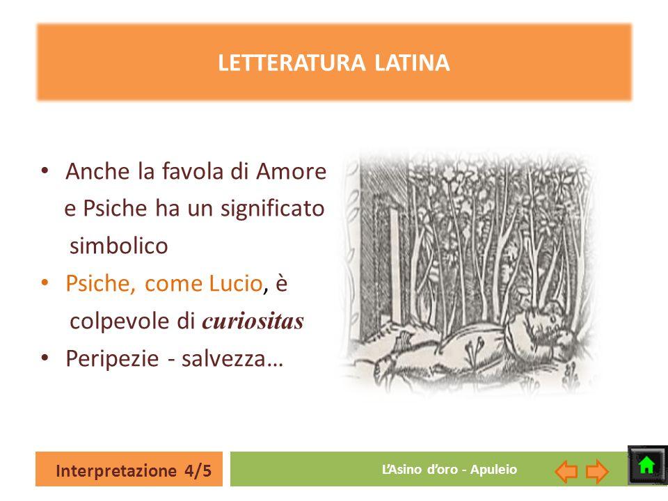 Interpretazione 4/5 LAsino doro - Apuleio LETTERATURA LATINA Anche la favola di Amore e Psiche ha un significato simbolico Psiche, come Lucio, è colpe