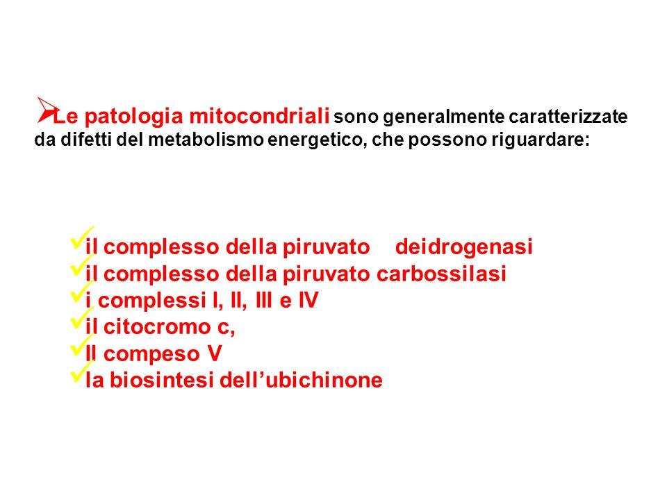 Le patologia mitocondriali sono generalmente caratterizzate da difetti del metabolismo energetico, che possono riguardare: il complesso della piruvato