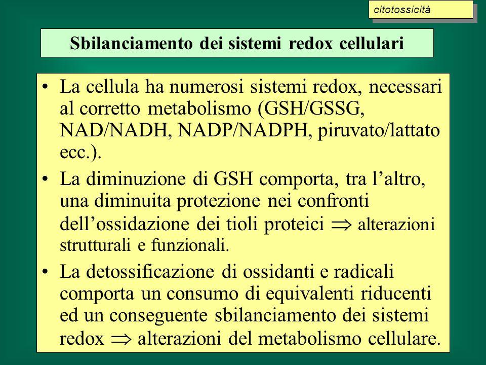 La cellula ha numerosi sistemi redox, necessari al corretto metabolismo (GSH/GSSG, NAD/NADH, NADP/NADPH, piruvato/lattato ecc.). La diminuzione di GSH
