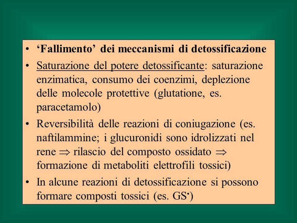 Fallimento dei meccanismi di detossificazione Saturazione del potere detossificante: saturazione enzimatica, consumo dei coenzimi, deplezione delle molecole protettive (glutatione, es.