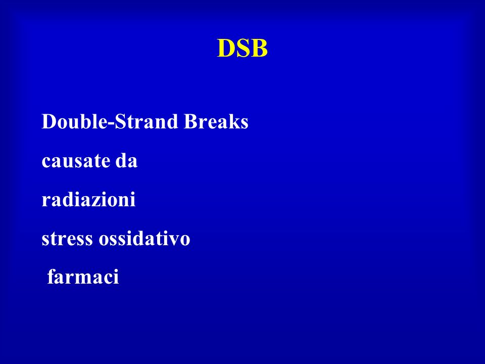 Proteine piattaforma Nbs1, a subunit of a complex that recognizes DNA DSBs Mre, Rad50 kinase signaling HRR SSB