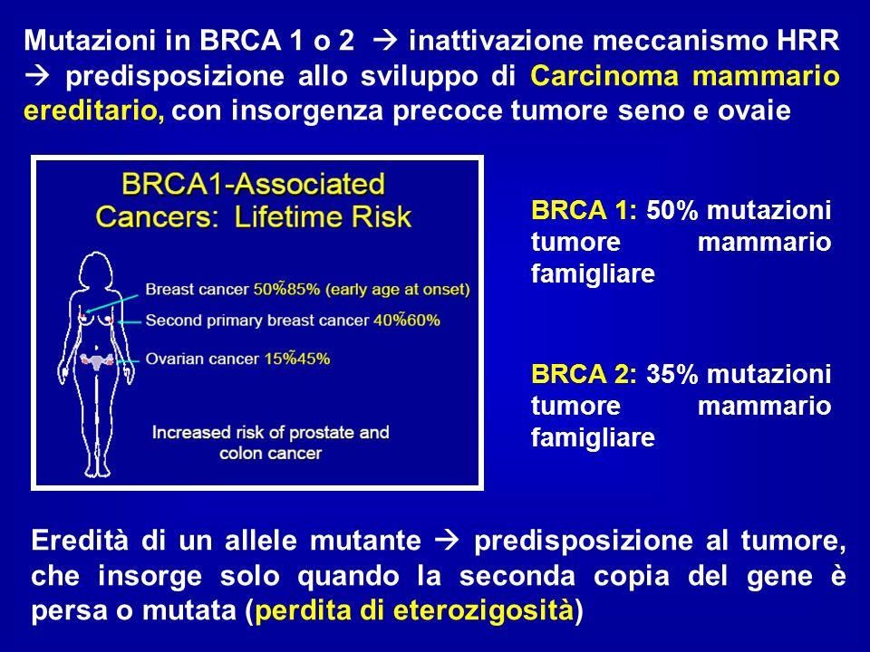 Mutazioni in BRCA 1 o 2 inattivazione meccanismo HRR predisposizione allo sviluppo di Carcinoma mammario ereditario, con insorgenza precoce tumore sen