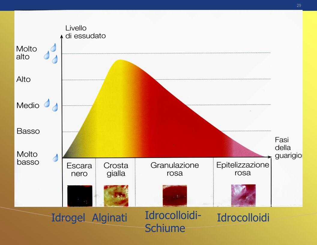 29 IdrogelAlginati Idrocolloidi- Schiume Idrocolloidi
