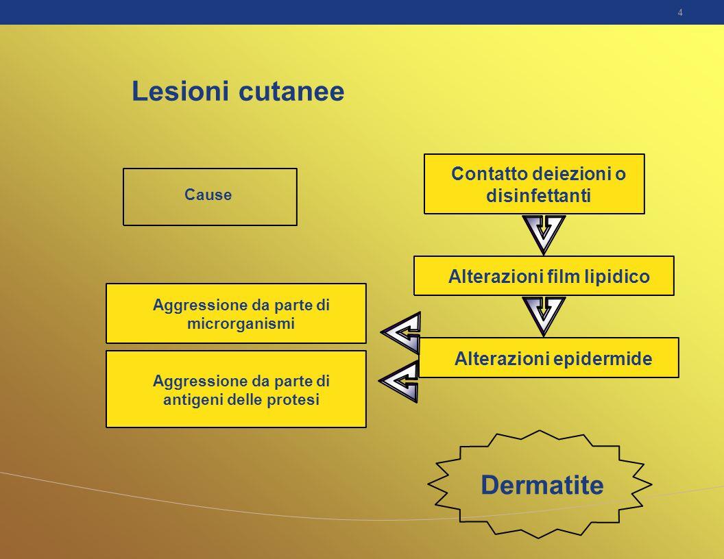 4 Cause Lesioni cutanee Contatto deiezioni o disinfettanti Alterazioni film lipidico Alterazioni epidermide Aggressione da parte di microrganismi Aggr