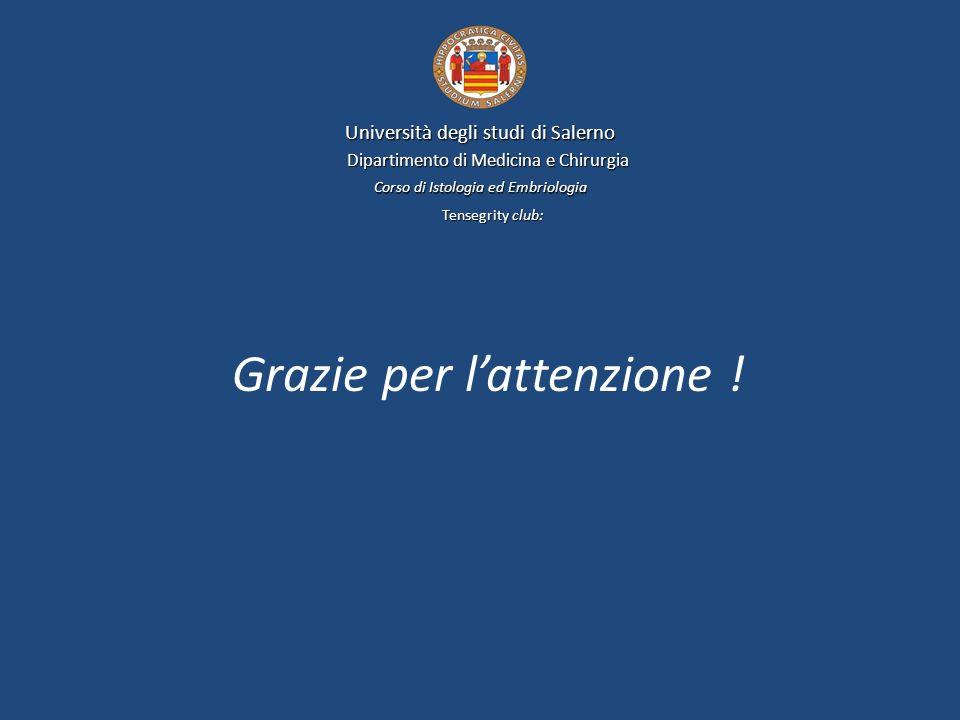Università degli studi di Salerno Dipartimento di Medicina e Chirurgia Corso di Istologia ed Embriologia Tensegrity club: Grazie per lattenzione !