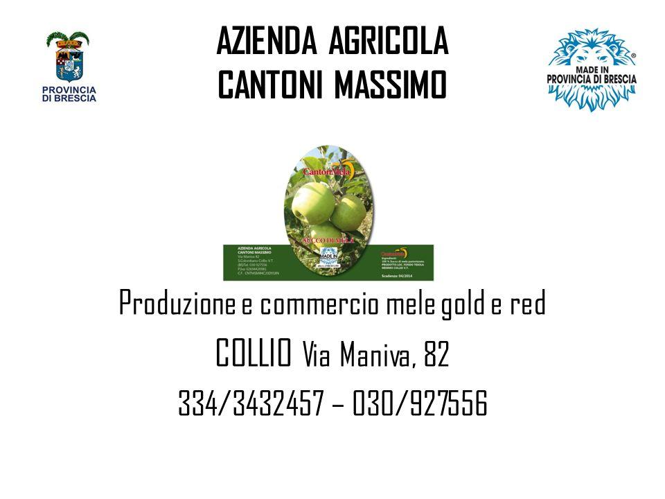 AZIENDA AGRICOLA CANTONI MASSIMO Produzione e commercio mele gold e red COLLIO Via Maniva, 82 334/3432457 – 030/927556