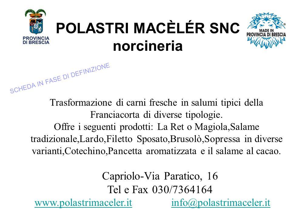 POLASTRI MACÈLÉR SNC norcineria Trasformazione di carni fresche in salumi tipici della Franciacorta di diverse tipologie.