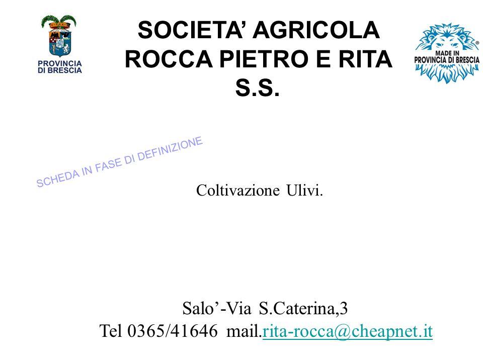 SOCIETA AGRICOLA ROCCA PIETRO E RITA S.S.