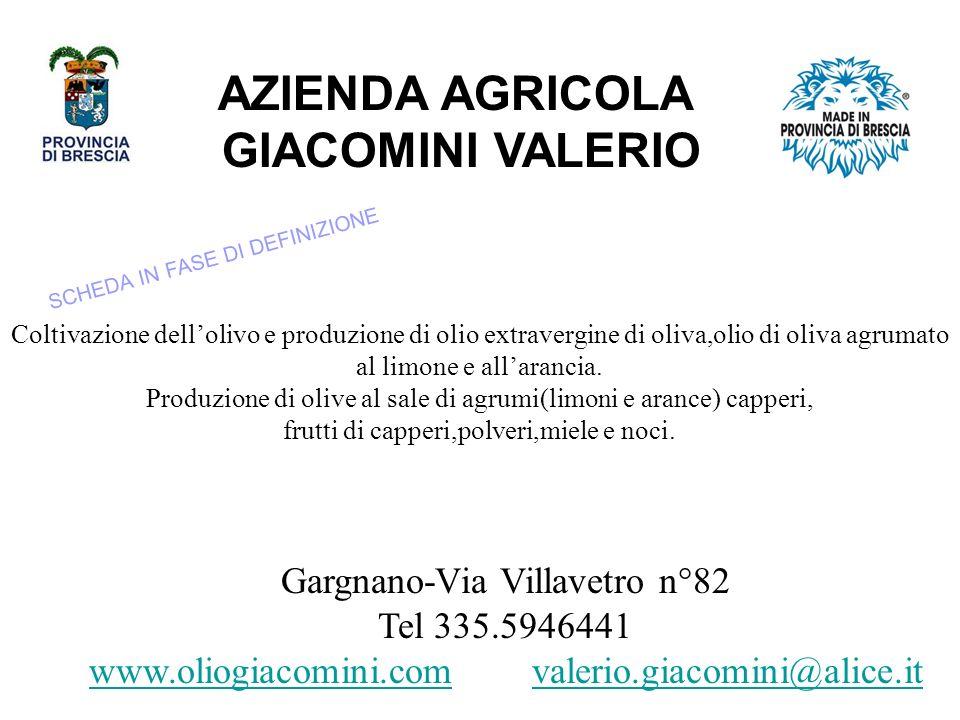 AZIENDA AGRICOLA GIACOMINI VALERIO Gargnano-Via Villavetro n°82 Tel 335.5946441 www.oliogiacomini.comwww.oliogiacomini.com valerio.giacomini@alice.itvalerio.giacomini@alice.it Coltivazione dellolivo e produzione di olio extravergine di oliva,olio di oliva agrumato al limone e allarancia.
