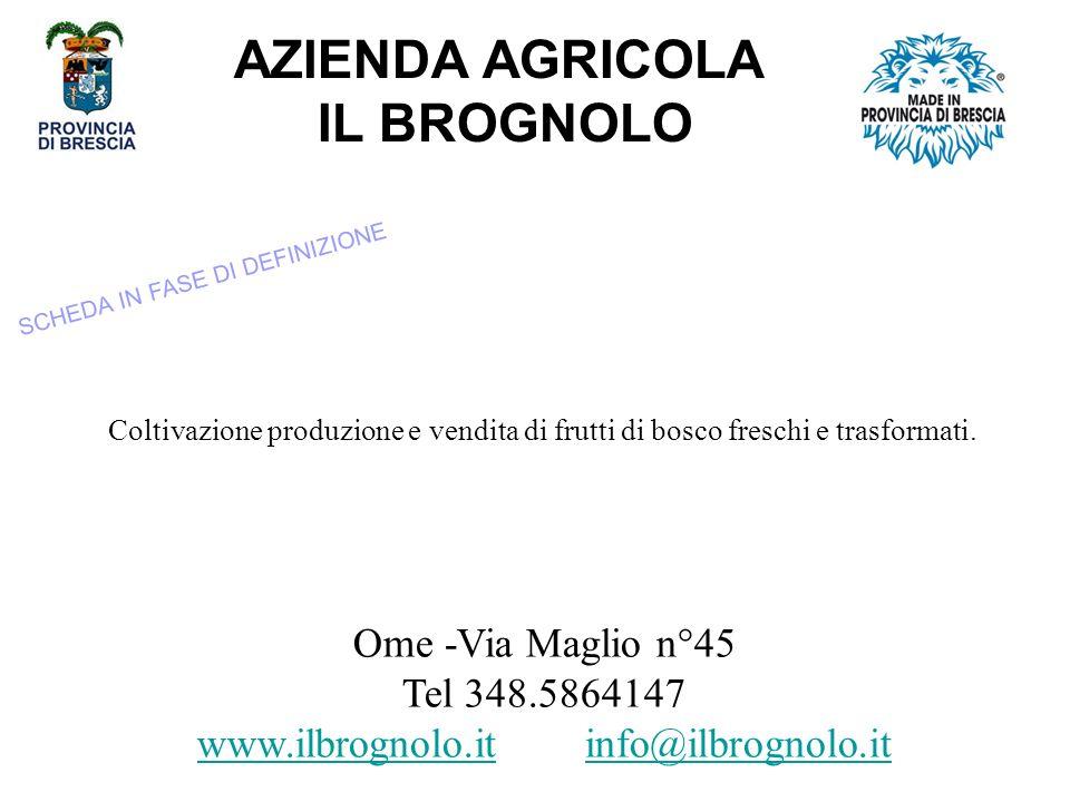 AZIENDA AGRICOLA IL BROGNOLO Ome -Via Maglio n°45 Tel 348.5864147 www.ilbrognolo.iwww.ilbrognolo.it info@ilbrognolo.itinfo@ilbrognolo.it Coltivazione produzione e vendita di frutti di bosco freschi e trasformati.