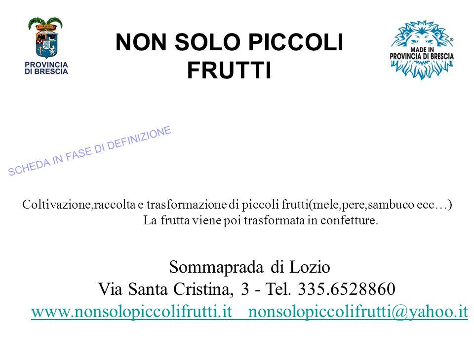 NON SOLO PICCOLI FRUTTI Sommaprada di Lozio Via Santa Cristina, 3 - Tel.