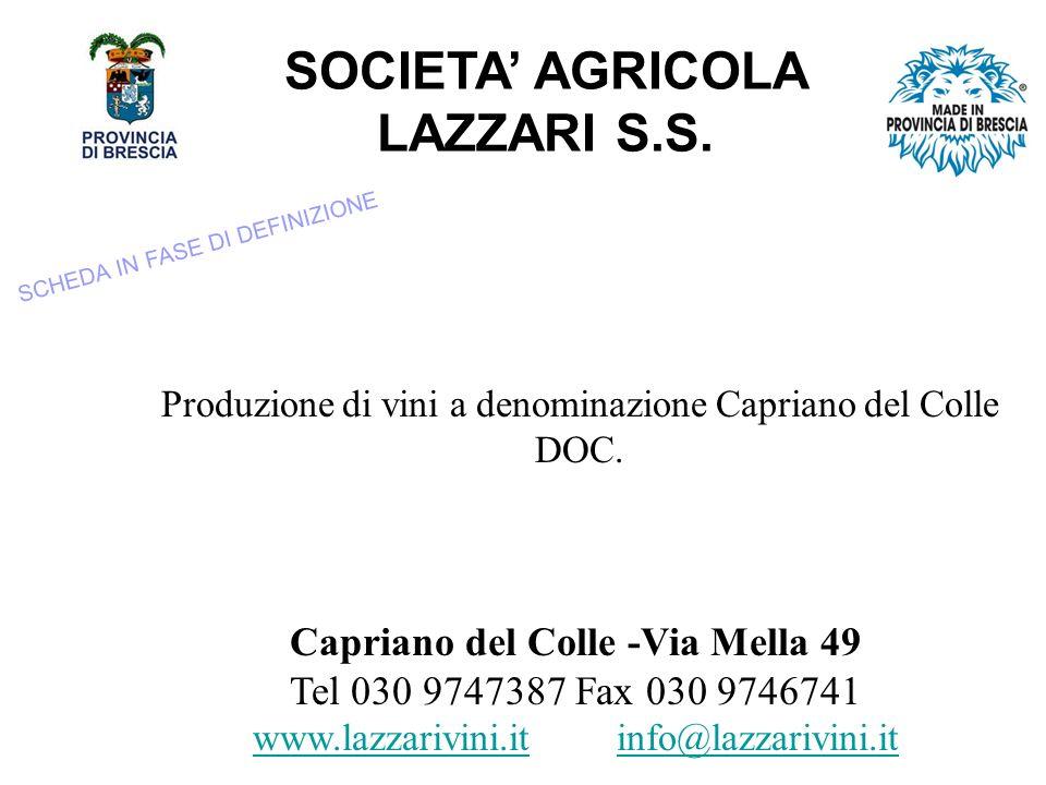 SOCIETA AGRICOLA LAZZARI S.S.Produzione di vini a denominazione Capriano del Colle DOC.