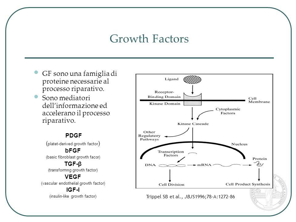 Evidenze dimostrate e conclusioni Acromionplastica - gesto utile alla liberazione di Fattori di crescita.