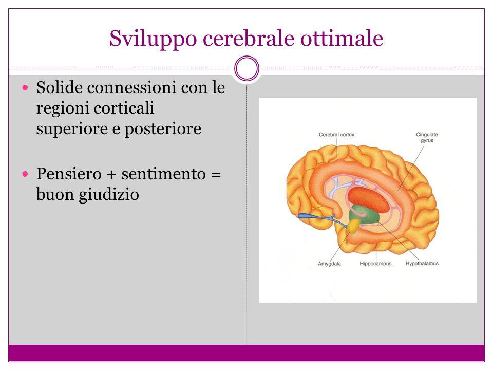 Sviluppo cerebrale ottimale Solide connessioni con le regioni corticali superiore e posteriore Pensiero + sentimento = buon giudizio