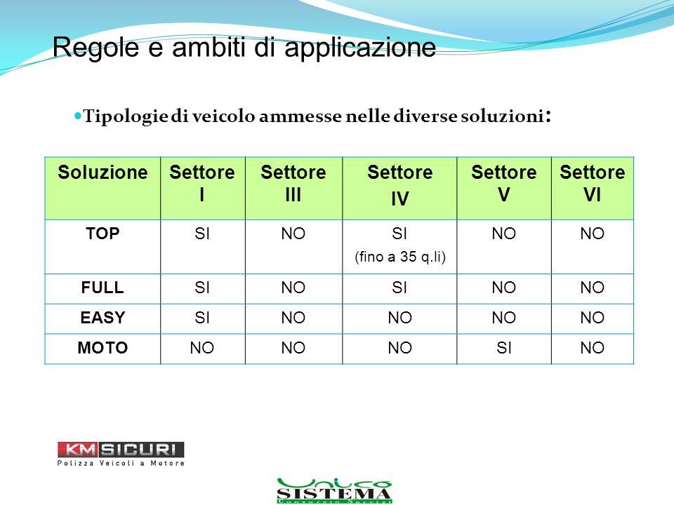 Tipologie di veicolo ammesse nelle diverse soluzioni : Regole e ambiti di applicazione SoluzioneSettore I Settore III Settore IV Settore V Settore VI