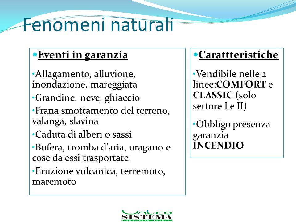 Fenomeni naturali Eventi in garanzia Allagamento, alluvione, inondazione, mareggiata Grandine, neve, ghiaccio Frana,smottamento del terreno, valanga,