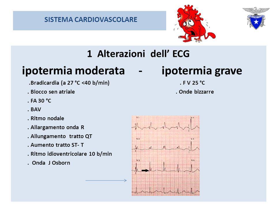 SISTEMA CARDIOVASCOLARE 1 Alterazioni dell ECG ipotermia moderata - ipotermia grave.Bradicardia (a 27 °C <40 b/min).
