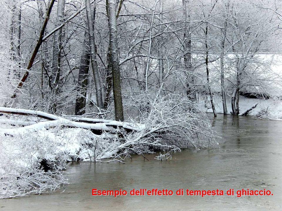Esempio delleffetto di tempesta di ghiaccio.