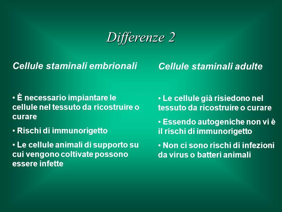 Cellule staminali embrionali È necessario impiantare le cellule nel tessuto da ricostruire o curare Rischi di immunorigetto Le cellule animali di supporto su cui vengono coltivate possono essere infette Cellule staminali adulte Le cellule già risiedono nel tessuto da ricostruire o curare Essendo autogeniche non vi è il rischi di immunorigetto Non ci sono rischi di infezioni da virus o batteri animali Differenze 2