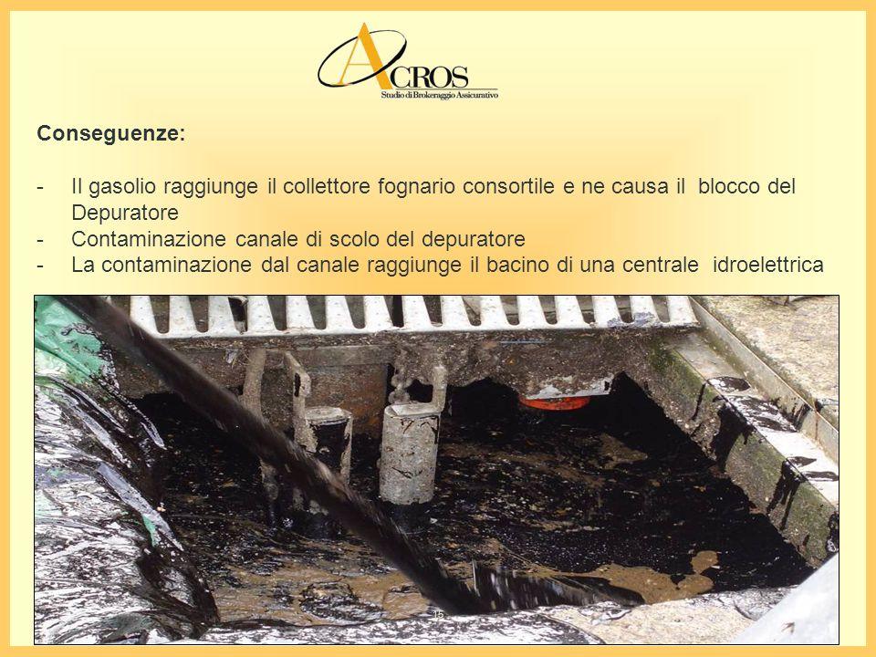 Conseguenze: - Il gasolio raggiunge il collettore fognario consortile e ne causa il blocco del Depuratore - Contaminazione canale di scolo del depuratore - La contaminazione dal canale raggiunge il bacino di una centrale idroelettrica 15