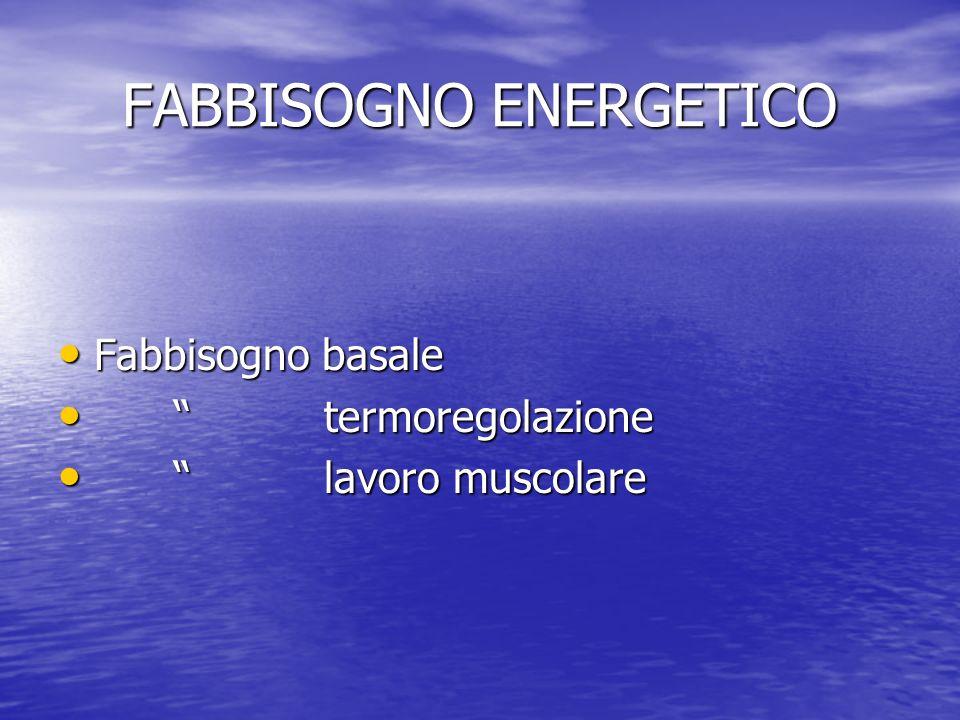 FABBISOGNO ENERGETICO Fabbisogno basale Fabbisogno basale termoregolazione termoregolazione lavoro muscolare lavoro muscolare