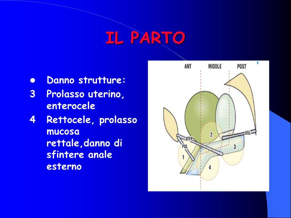 IL PARTO Danno strutture: 3Prolasso uterino, enterocele 4Rettocele, prolasso mucosa rettale,danno di sfintere anale esterno