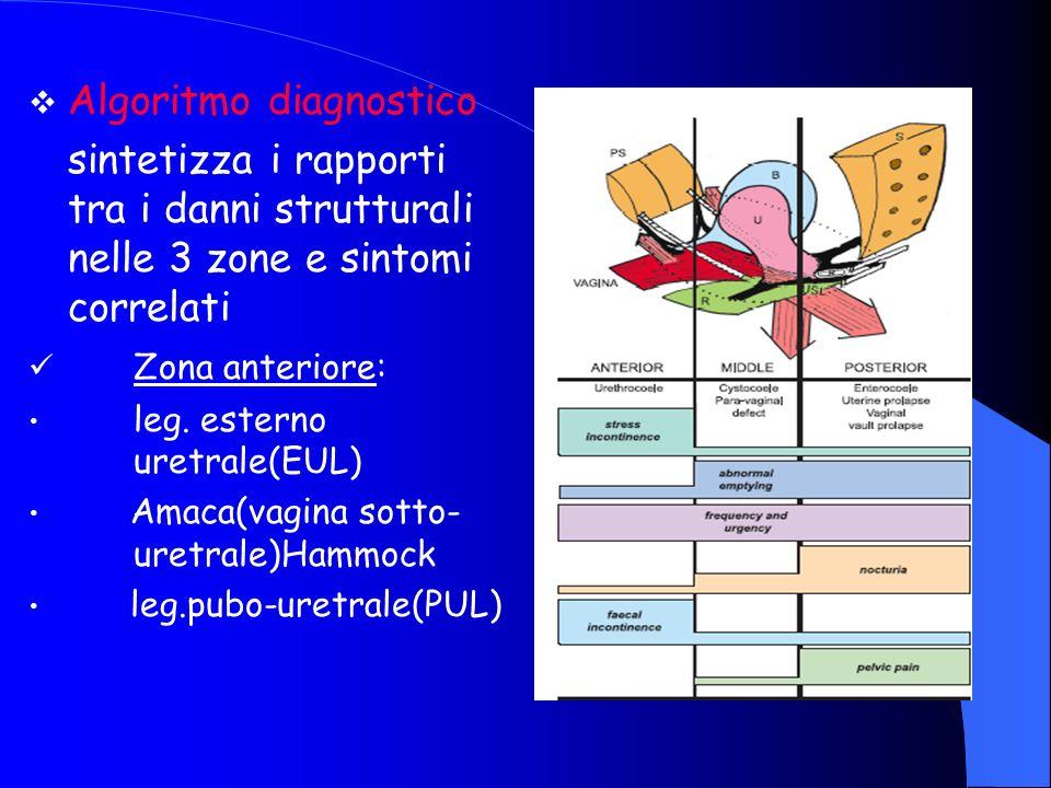 Algoritmo diagnostico sintetizza i rapporti tra i danni strutturali nelle 3 zone e sintomi correlati Zona anteriore: leg.