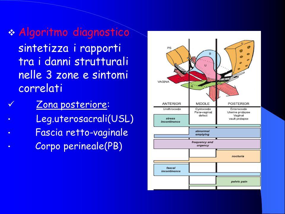 Algoritmo diagnostico sintetizza i rapporti tra i danni strutturali nelle 3 zone e sintomi correlati Zona posteriore: Leg.uterosacrali(USL) Fascia retto-vaginale Corpo perineale(PB)