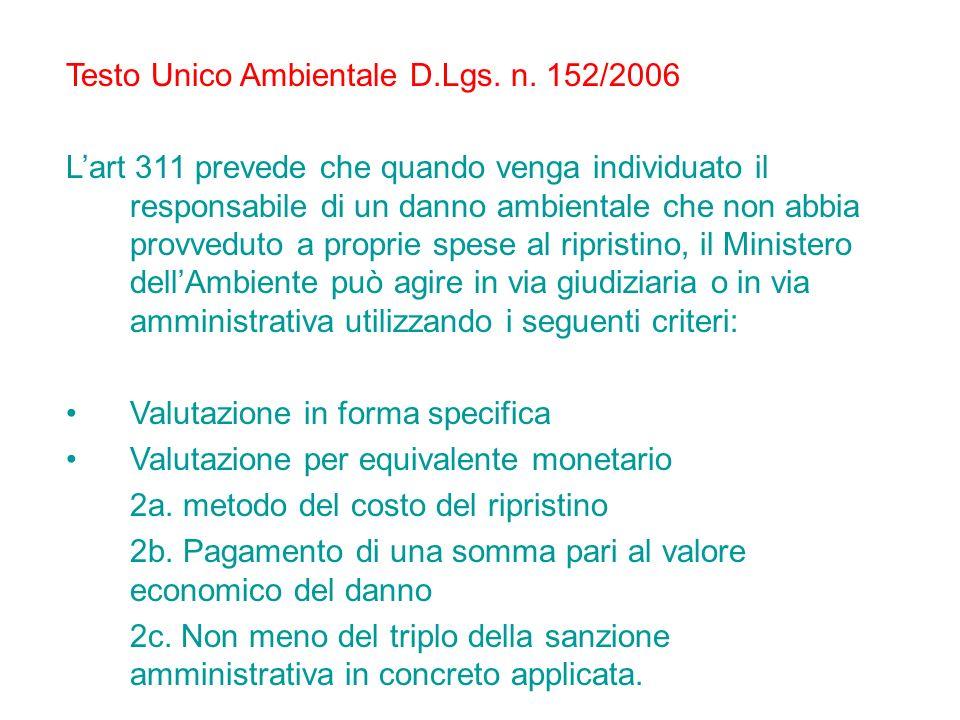Testo Unico Ambientale D.Lgs. n. 152/2006 Lart 311 prevede che quando venga individuato il responsabile di un danno ambientale che non abbia provvedut