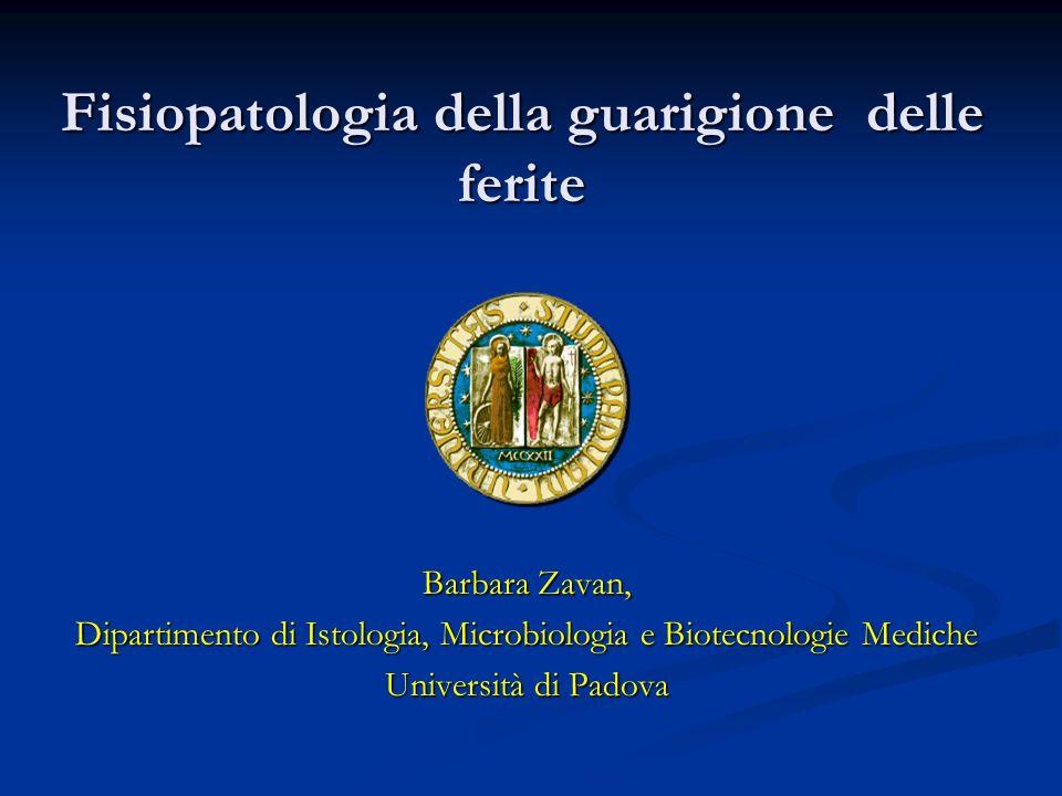 Fisiopatologia della guarigione delle ferite Barbara Zavan, Dipartimento di Istologia, Microbiologia e Biotecnologie Mediche Università di Padova