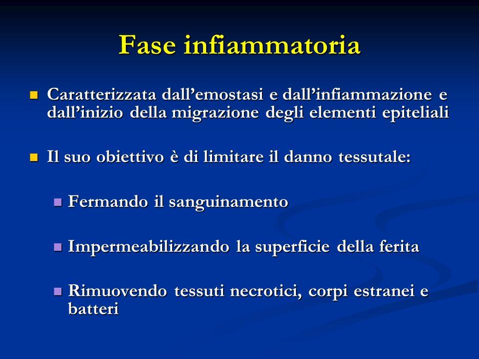 Caratterizzata dallemostasi e dallinfiammazione e dallinizio della migrazione degli elementi epiteliali Caratterizzata dallemostasi e dallinfiammazion