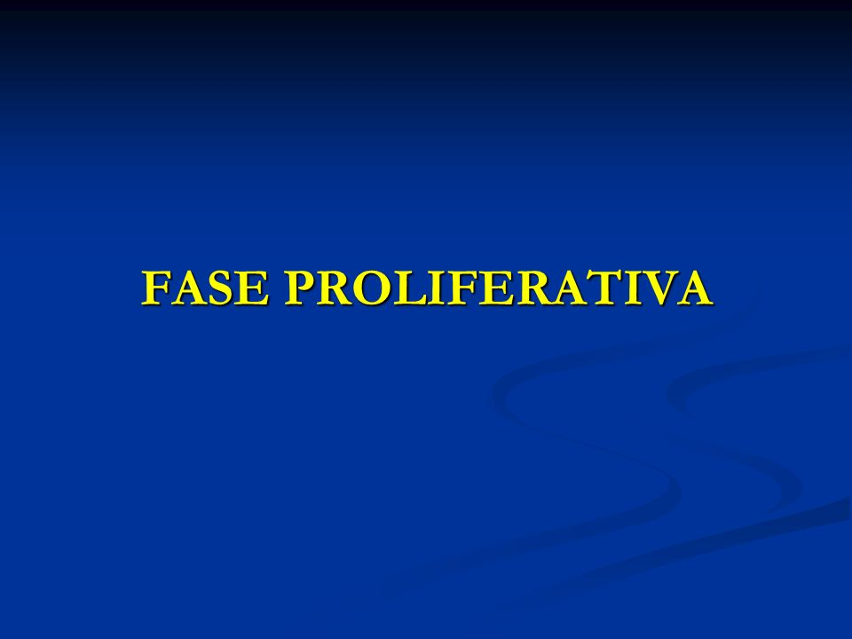 FASE PROLIFERATIVA
