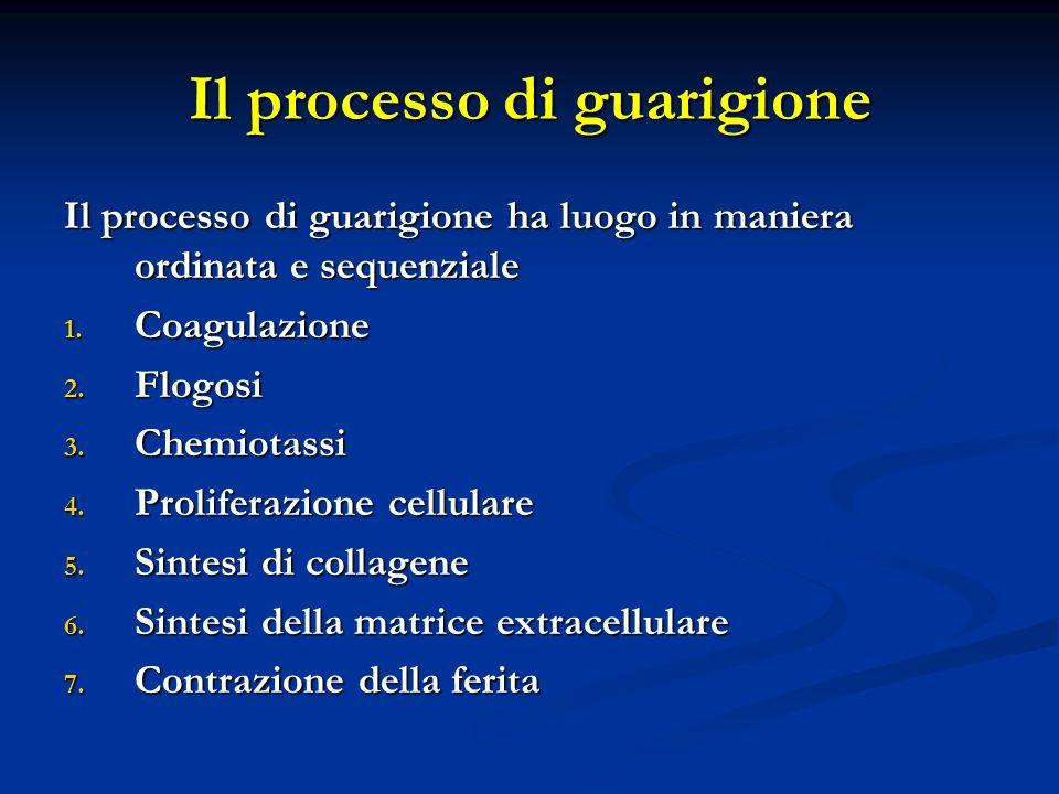 Il processo di guarigione ha luogo in maniera ordinata e sequenziale 1. Coagulazione 2. Flogosi 3. Chemiotassi 4. Proliferazione cellulare 5. Sintesi