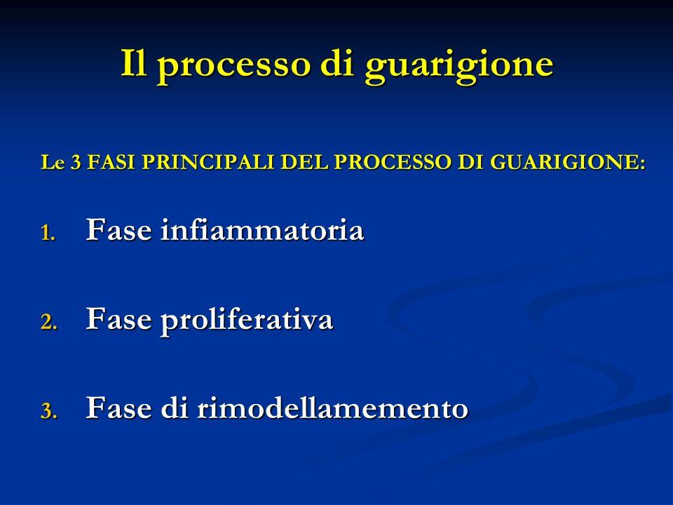 Il processo di guarigione Le 3 FASI PRINCIPALI DEL PROCESSO DI GUARIGIONE: 1. Fase infiammatoria 2. Fase proliferativa 3. Fase di rimodellamemento