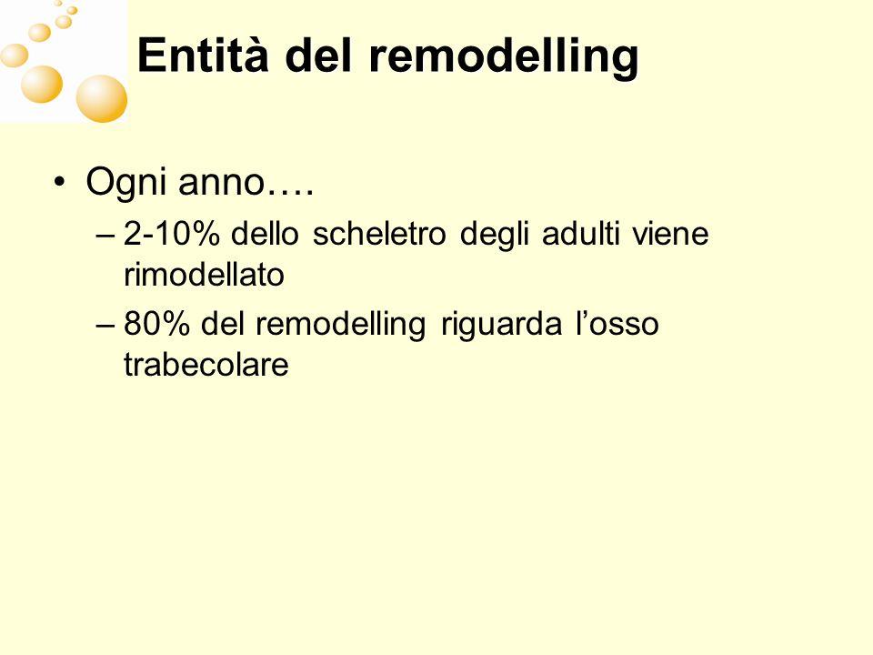 Entità del remodelling Ogni anno…. –2-10% dello scheletro degli adulti viene rimodellato –80% del remodelling riguarda losso trabecolare