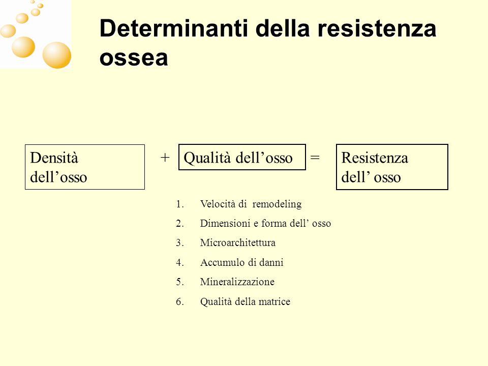 Determinanti della resistenza ossea Densità dellosso + Qualità dellossoResistenza dell osso = 1.Velocità di remodeling 2.Dimensioni e forma dell osso