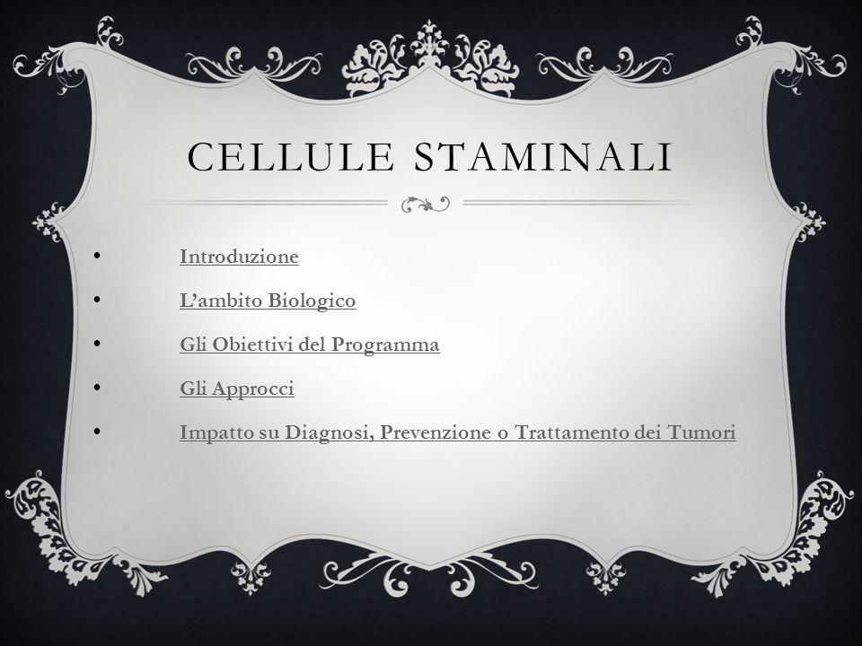 CELLULE STAMINALI Più si rimane vicini allo stadio embrionale, più elevata è la potenzialità delle cellule staminali.