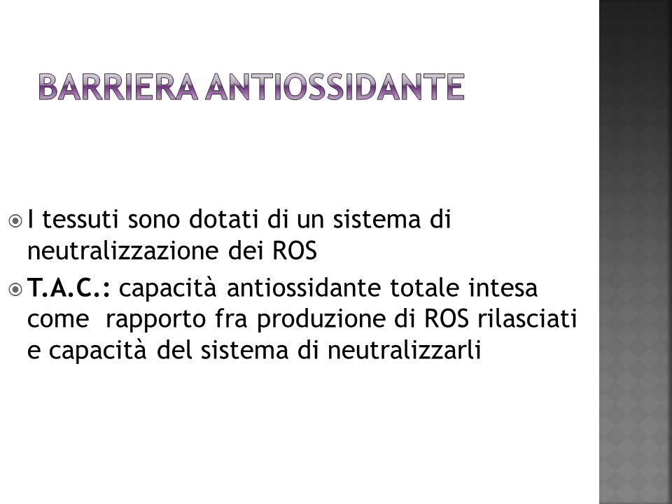 I tessuti sono dotati di un sistema di neutralizzazione dei ROS T.A.C.: capacità antiossidante totale intesa come rapporto fra produzione di ROS rilas